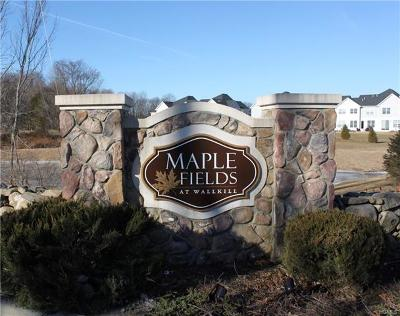 Middletown Single Family Home For Sale: 23 Meadow View Drive