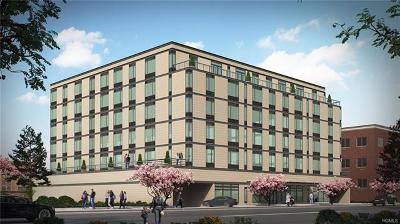 New Rochelle Rental For Rent: 20 Burling Lane #2N