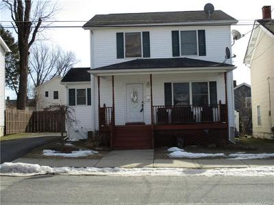 Port Jervis Single Family Home For Sale: 25 Thompson Street