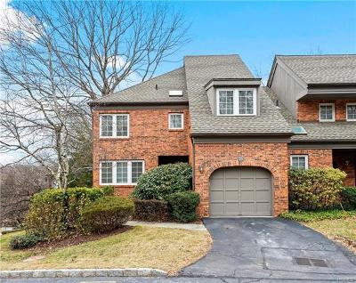 Ardsley Single Family Home For Sale: 23 Old Mill Lane