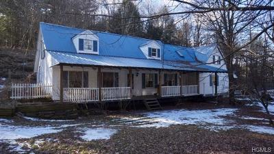 White Lake Single Family Home For Sale: 29 Schultz Lane
