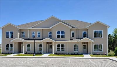 Carmel Condo/Townhouse For Sale: 1204 Pankin Drive #1204