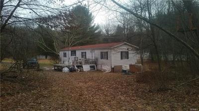 Wurtsboro Single Family Home For Sale: 20 Haven Road