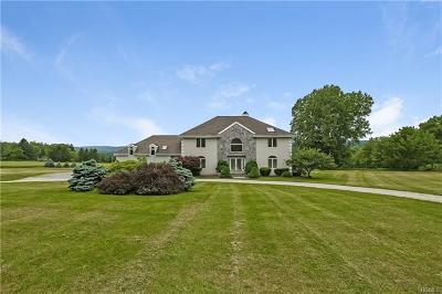 Dutchess County Single Family Home For Sale: 31 Lola Lane