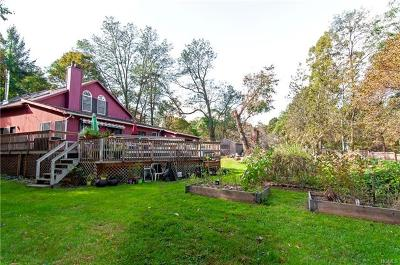Cornwall On Hudson Single Family Home For Sale: 49 Weeks Avenue