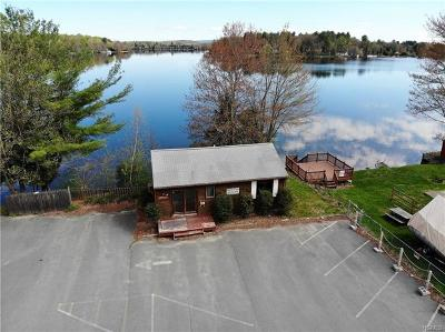 Commercial For Sale: 1562 Nys Hwy 17b