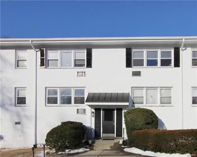 Westchester County Condo/Townhouse For Sale: 44 Avon Circle #A