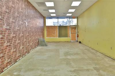New City Commercial For Sale: 170 South Main Street #3