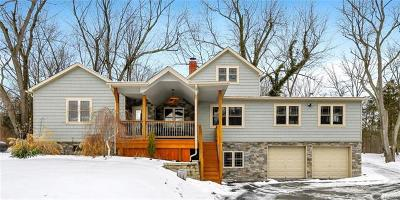 Chester Single Family Home For Sale: 3048 State Route 94