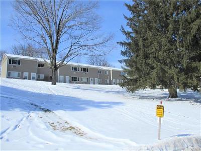 Dutchess County Condo/Townhouse For Sale: 11 Fishkill Glen Drive #F