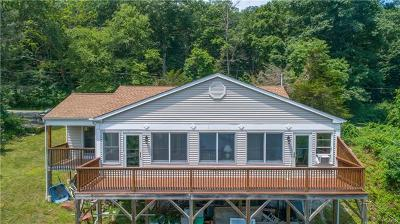 Dutchess County Single Family Home For Sale: 1408 Route 292