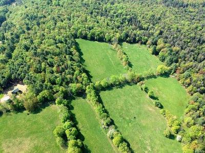 Neversink NY Residential Lots & Land For Sale: $244,500
