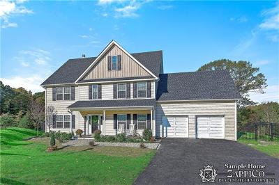 Chappaqua Single Family Home For Sale: 6 (Lot 10) Point Place