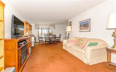 Yonkers Co-Operative For Sale: 110 Dehaven Drive #617