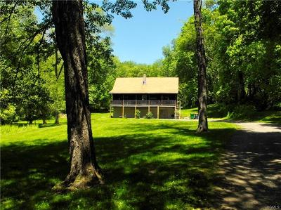 Dutchess County Single Family Home For Sale: 891 Camby Road