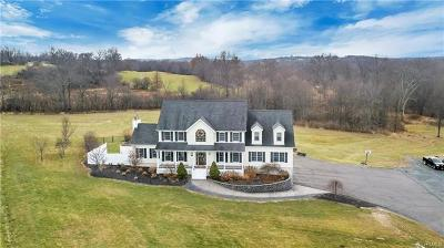 Orange County, Sullivan County, Ulster County Single Family Home For Sale: 16 Sanok Drive
