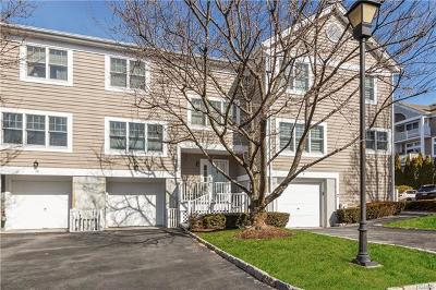 Rye Brook Single Family Home For Sale: 11 Brookridge Court