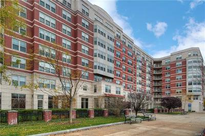 Westchester County Condo/Townhouse For Sale: 300 Mamaroneck Avenue #720