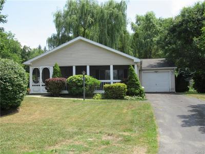 Dutchess County Single Family Home For Sale: 9 Vero Drive