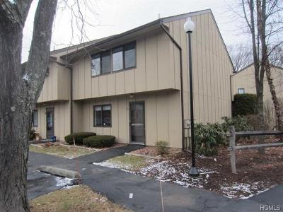 Dutchess County Condo/Townhouse For Sale: 60 Hudson Heights Drive