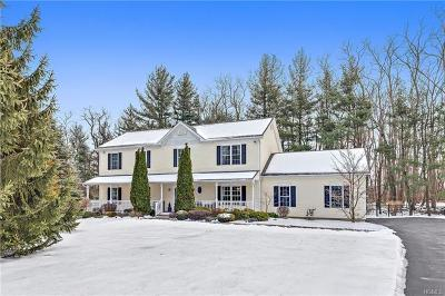 Westchester County Single Family Home For Sale: 53 Stormytown Road