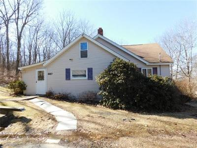 Port Jervis Single Family Home For Sale: 660 Us Highway 6