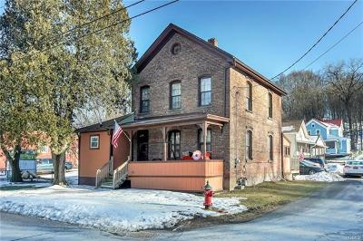 Esopus Single Family Home For Sale: 161 First Avenue