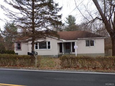 Dutchess County Single Family Home For Sale: 6 East Dorsey Lane