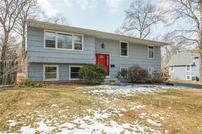 Rockland County Single Family Home For Sale: 5 Michael Drive