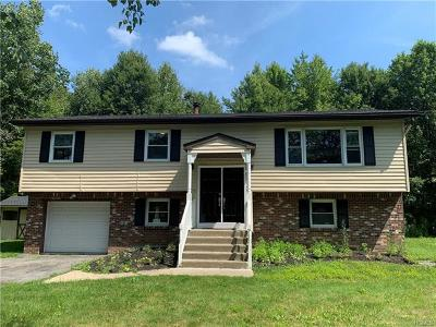 Wallkill Single Family Home For Sale: 142 Freetown Road