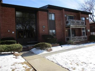 Rockland County Condo/Townhouse For Sale: 9 Darian Court #2D