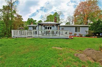 Westchester County Single Family Home For Sale: 56 Dutch Street