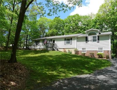 Dutchess County, Orange County, Sullivan County, Ulster County Single Family Home For Sale: 202 Mine Road