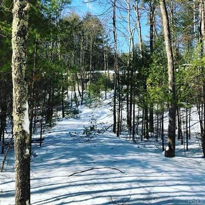 Orange County, Sullivan County, Ulster County Residential Lots & Land For Sale: 30 Froners Road
