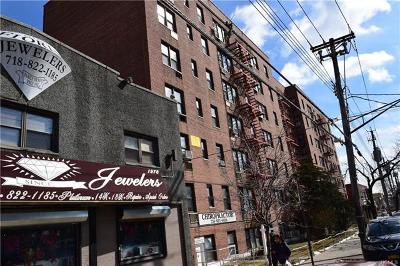 Bronx County Commercial For Sale: 1978 Williamsbridge Road