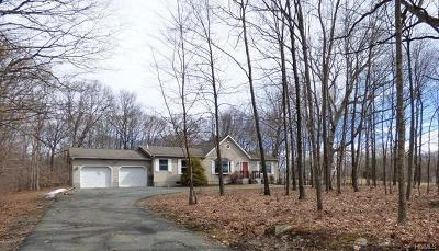 Port Jervis Single Family Home For Sale: 662 Mullock Road