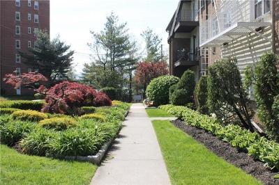 Rental For Rent: 292 Piermont Avenue #1E