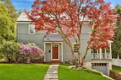 Dobbs Ferry Single Family Home For Sale: 194 Palisade Avenue