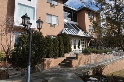 Mamaroneck Rental For Rent: 300 Livingston Avenue #2A