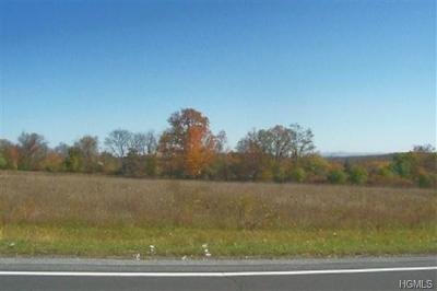 Orange County, Sullivan County, Ulster County Residential Lots & Land For Sale: Goshen Turnpike