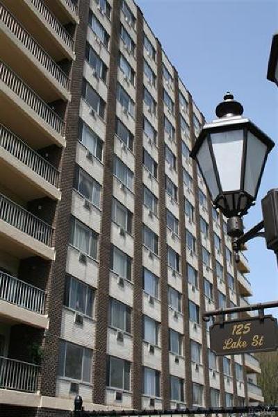 White Plains Rental For Rent: 125 Lake Street #6N North