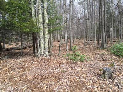Dutchess County, Orange County, Sullivan County, Ulster County Residential Lots & Land For Sale: Brown Road