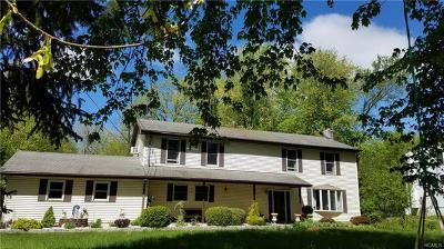 Dutchess County Single Family Home For Sale: 27 Warren Drive