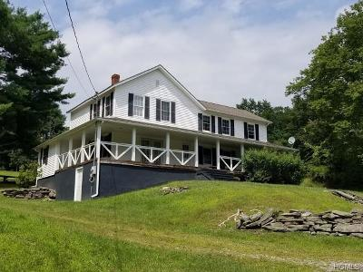 Narrowsburg Single Family Home For Sale: 396 Irish Town Road
