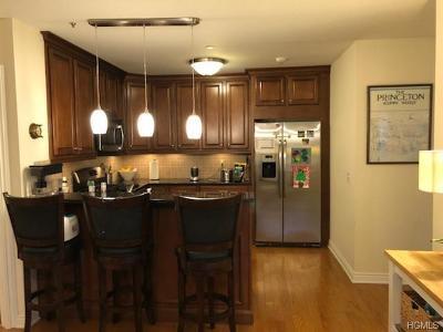 Mamaroneck Rental For Rent: 101 North Sheldrake Place #10