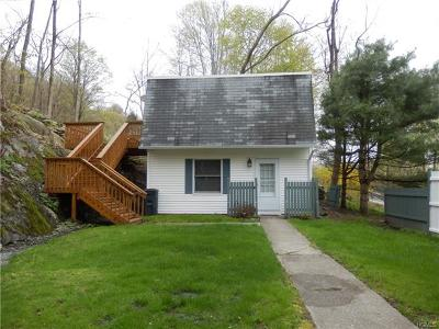 Patterson Single Family Home For Sale: 159 Route 164