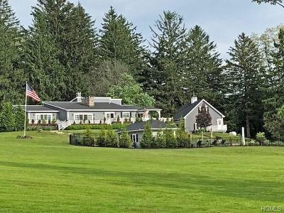 Dutchess County Single Family Home For Sale: 4 Strawberry Hill Road
