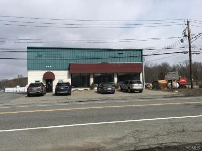 Monroe Commercial For Sale: 546 State Route 17m