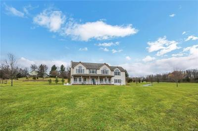 Chester Single Family Home For Sale: 25 Goshen Road