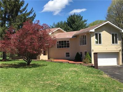 Goshen Single Family Home For Sale: 3331 Route 207